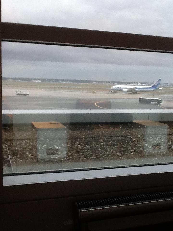 ANA 787 in Frankfurt